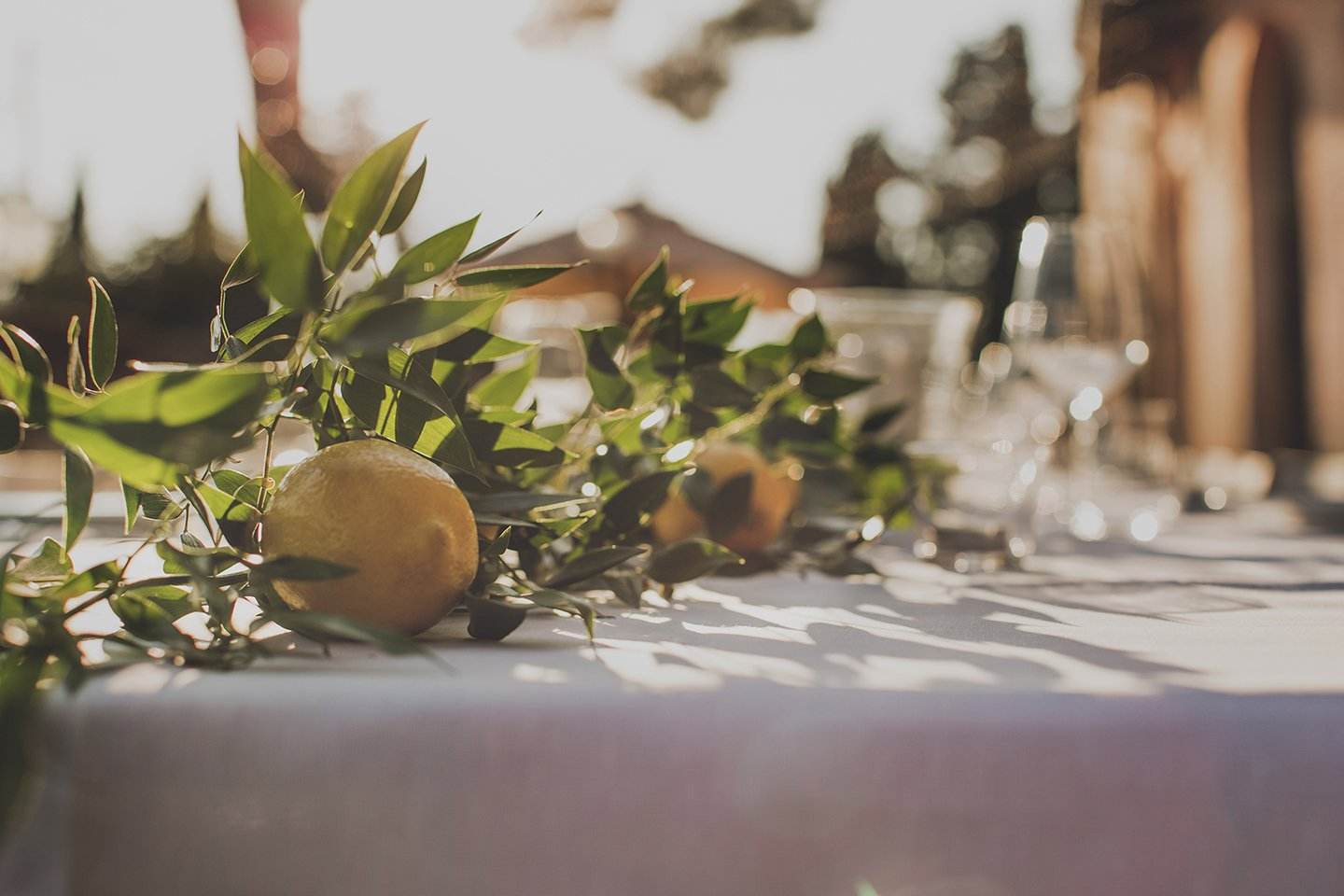 lemon-wedding-dinner-table-set-up-Vignamaggio-Tuscany