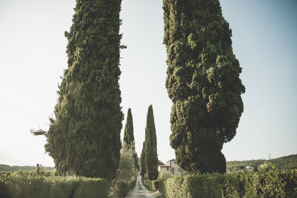 Cypress-road-Florence-countryside-wedding-private-family-villa